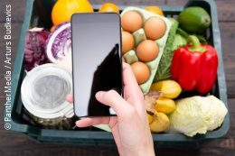 A person holds a smartphone over a box of fresh food; copyright: PantherMedia/Arturs Budkevics